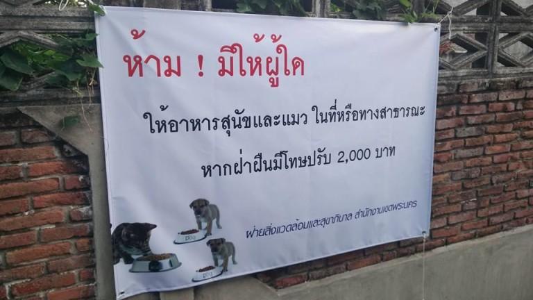 Putthachai Kamgaew
