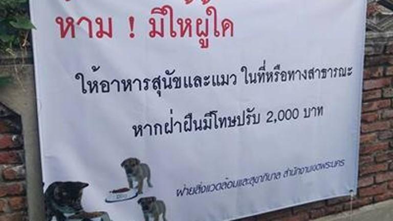 นี่แหละประเทศไทย