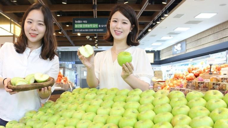 상큼한 초록 사과 '아오리' 맛보세요~!