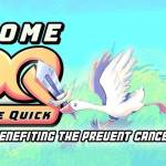 Record-breaking Awesome Games Done Quick raises over $3 million