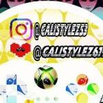 CALISTYLEZ - Mixer