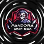 Join the DNM PANDORA Discord Server!